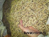 Минтопэнерго Тувы намерено освоить производство пеллет – топлива из отходов деревопереработки