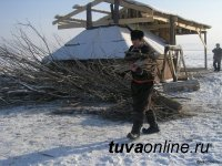 Зимовка скота в Туве проходит в стабильном режиме