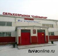 """Кызыл: До сельхозрынка """"Сайзырал"""" на маршрутке 14"""