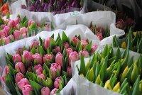 "Кызыл: уличные ""развалы"" цветов"