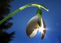 8 марта в Туве ожидается теплая погода