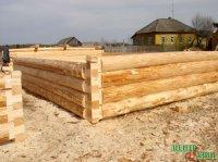Тува. Как получить льготную древесину?