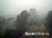 27 апреля в Туве ожидаются сильный ветер и пыльная буря