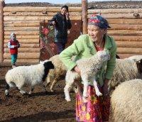 В Год народных традиций в Туве законодательно защитят исконное занятие народа - отгонное животноводство