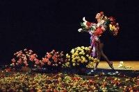 В Мюнхене на 90-м году жизни скончалась Майя Плисецкая, великая русская балерина