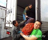 Почти 1500 малообеспеченных семей Тувы получат семенной картофель для посадки