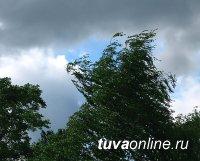 В Туве 20 мая возможен град