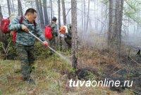 Глава Тувы призвал земляков быть осторожными в лесу