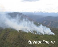 В Туве зарегистрированы два лесных пожара - в Пий-Хемском и Сут-Хольском кожуунах