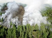 В Туве за сутки ликвидировано два пожара, четыре - локализовано