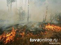 В Туве действуют 9 лесных пожаров
