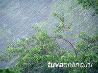 В Туве ожидаются грозы