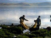 Глава Тувы предложил ввести льготный порядок выдачи квот на рыбную ловлю для коренных малочисленных народов Севера