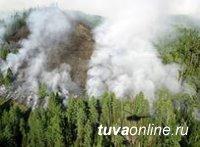В Туве действует 11 лесных пожаров на территории более 2000 га