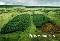 Тува на 65-м месте в экологическом рейтинге регионов России