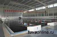 До конца декабря в Ак-Довураке заработает бассейн