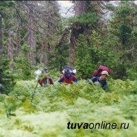 Поиски пропавшей в Тоджинском районе Тувы 62-летней женщины осложняются большим снегом