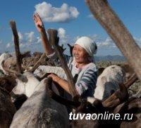 Тувинские единороссы берут под опеку детей тоджинских оленеводов