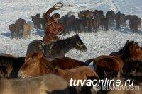Объявлен конкурс  профессиональной и любительской фотографии  «Моя Россия»