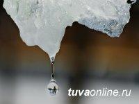 Первая неделя весны в Туве будет теплой