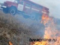Тува: МЧС предупреждает об ужесточении штрафов за поджог травы