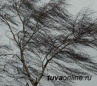 Сильный ветер и гололедица на дорогах ожидаются в Туве 13 апреля