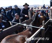 Шолбан Кара-оол: В честь тувинских добровольцев 2 сентября впервые пройдут республиканские скачки среди скакунов тувинской породы