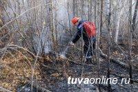 В таежном Каа-Хемском районе Тувы действует один лесной пожар