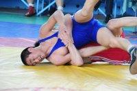 В Туве готовятся к проведению Всероссийского турнира по вольной борьбе «Центр Азии»