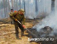 В Каа-Хемском районе Тувы действуют два лесных пожара