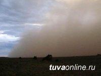 В Туве 8 мая ожидается усиление ветра и пыльная буря. МЧС предупреждает: в такую погоду разжигать костры особенно опасно