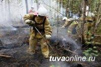 В Туве действуют два лесных пожара площадью 212 га