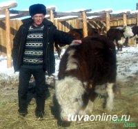 Фермер Александр Инюткин: Я получил мощную поддержку правительства Тувы