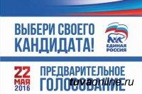 22 мая для проведения предварительного голосования в Кызыле с 8 до 20 часов будут работать 10 избирательных участков