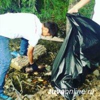 «Добрые сердца Тувы» отмечают День молодежи экологическими акциями