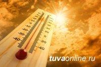 В Туве сохраняется сильная жара. Температура воздуха +35 и выше