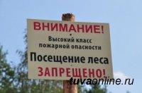В Туве продлили запрет на пребывание в лесу для 10 районов