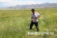 Глава Тувы ставит задачу по продолжению ремонта оросительных систем, заброшенных с советских времен