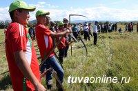 Команда Улуг-Хемского кожууна второй год побеждает в республиканском конкурсе косарей