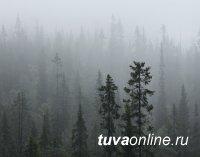 В Туве 10 августа ожидается сильный дождь, возможен град
