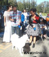 ДЕНЬ ГОРОДА: Выставка собак и кошек собрала более 30 домашних питомцев