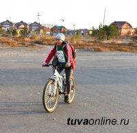 Всемирный день без автомобиля: на работу - на велосипеде, самокате, пешком