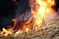 Из-за детской шалости в Каа-Хемском районе Тувы сгорело 4 тонны сена