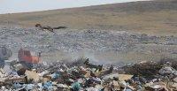Глава Тувы указал министру природы и экологии, а также мэру Кызыла на проблему утилизации бытовых отходов