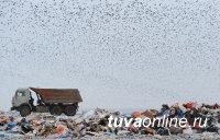 Минприроды РФ надеется за 10 лет ликвидировать две трети полигонов твердых бытовых отходов