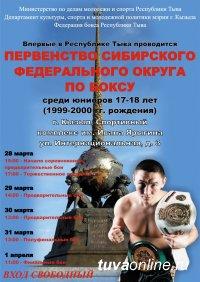 Туву ждет праздник юниорского бокса