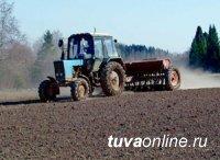 В Туве началась подготовка к весенне-полевым работам
