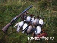 15 апреля в Туве откроется охота на водоплавающих