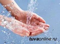 В Туве стартует масштабный месячник «чистые руки»