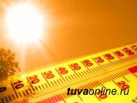 В Туве 15-16 мая ожидается сильная жара  до +35